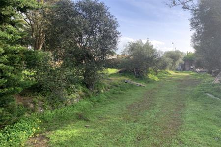 Lote, Bicuda, Cascais